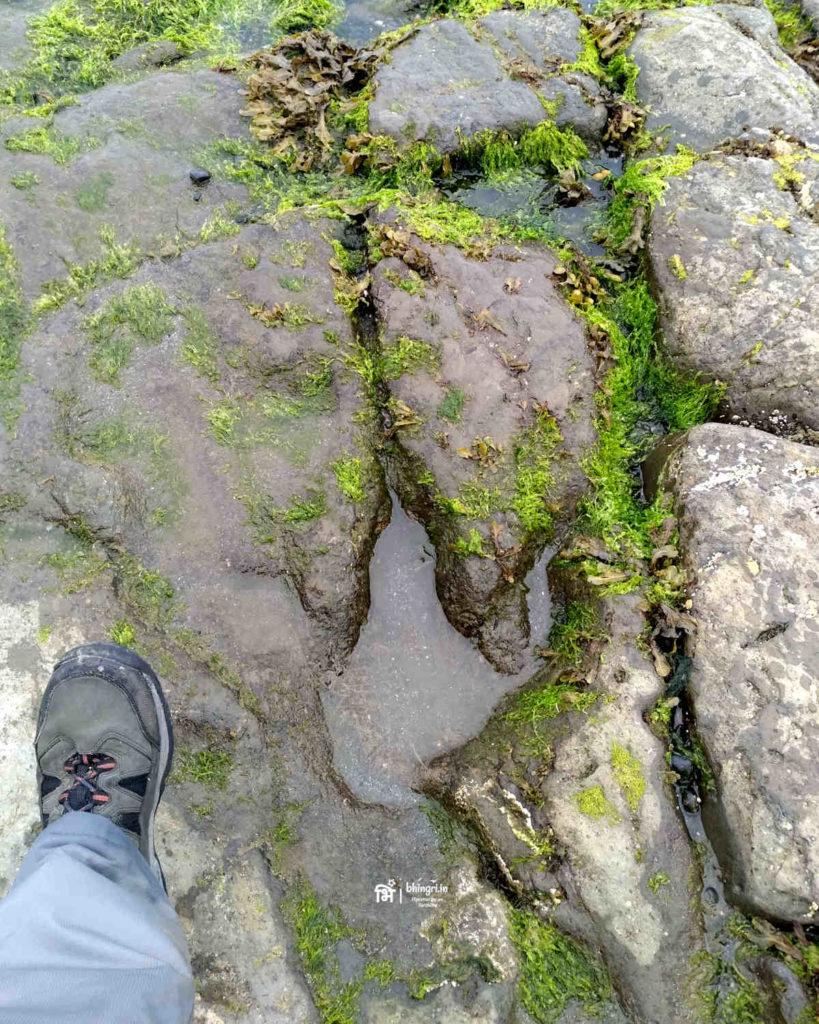 Megalosaurus footprint at An Corain beach, Staffin